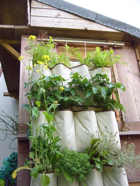 shoe_organizer_wall_garden_apartmenttherapy