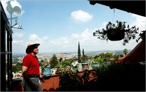 nytimes_frankyoung_roof_Garden_photo1