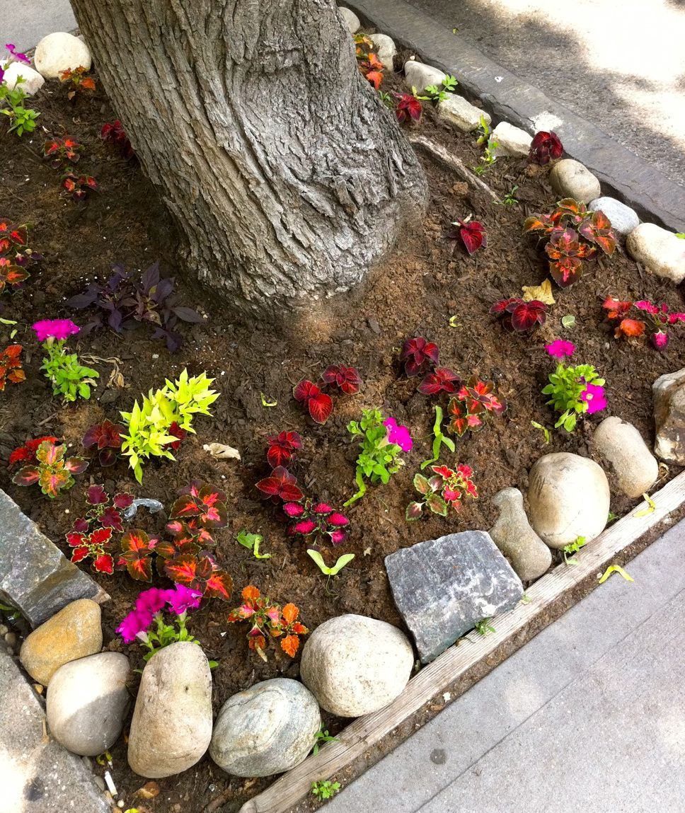 Where Do City Gardeners Find Stones for the Garden? | Brooklyn Roof ...