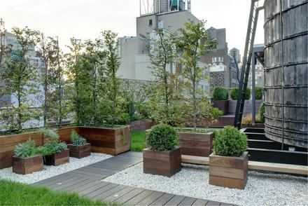 Brooklyn Roof Garden | Tilling the tar beach | Page 5